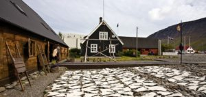 Discover isafjordur downtown