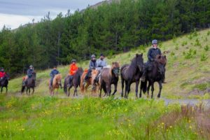 horseback riding tour iceland