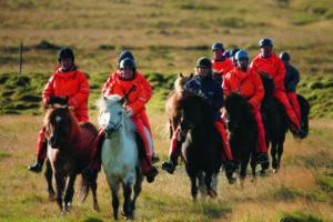 horse riding iceland
