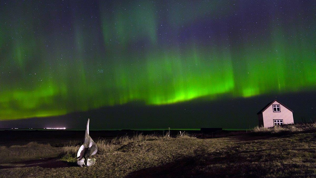 Ultimate Reykjavik Night Tour Beers Amp Northern Lights
