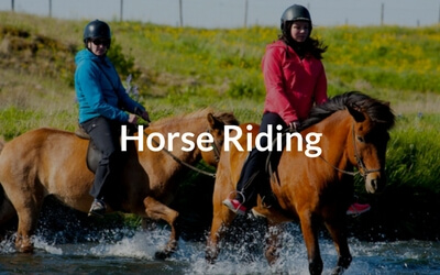 horse riding tours iceland