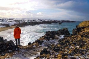 snaefellsnes-full-day-minibus-expedition-8-2