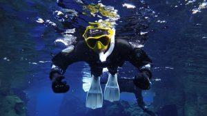 snorkeling silfra tour