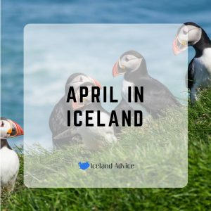 April in Iceland - What to do