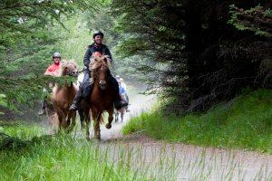 horseshotsprings