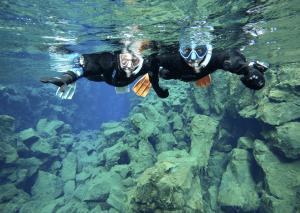 Snorkel Troll9-02-28 at 14.46.03
