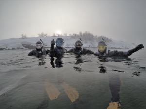 Snorkel Troll9-03-18 at 14.20.17
